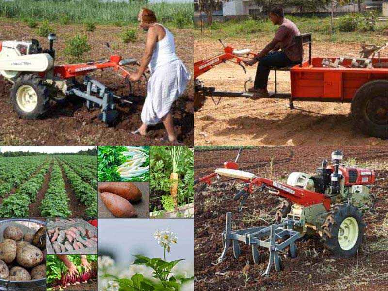 Tuber Tractor and Tiller Solutions