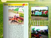 A VST Rice Transplanter demo program was conducted at Reddypuram in Warangal, Telangana